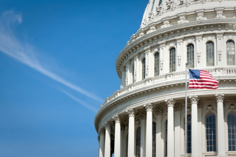 United States Capitol Dome and Flag